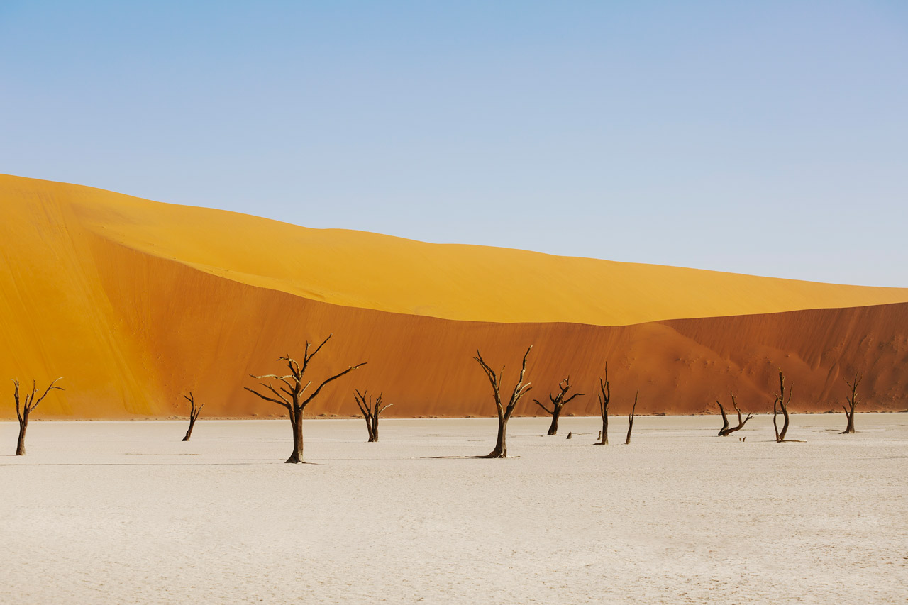 A abstract photo of Africa Landscape in yellow, gol and blue,